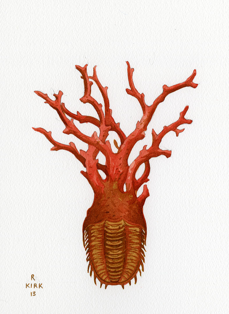 Red Coral Trilobite
