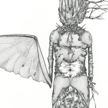 """Sinistral Sister, 2014, ink on paper, 12"""" x 8"""""""